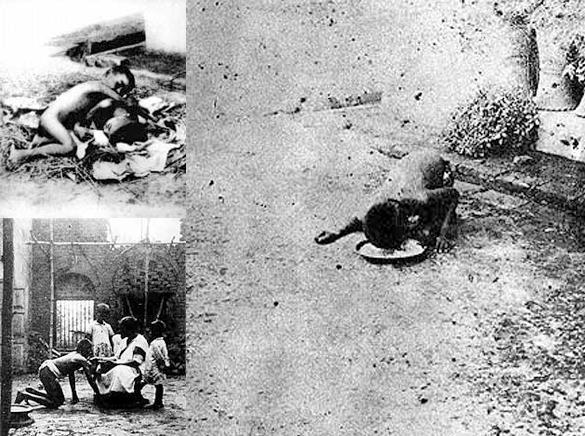 Ulvebørnene Mala og Kamala fra Midnapore i Nordindien. Blev opdaget kort efter 1. Verdenskrig og bragt til en missionsstation, hvor man forgæves forsøgte at gøre gode kristne mennesker af dem.