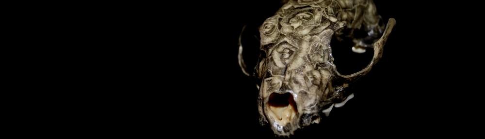Botanic Skull af Jacob Dahlstrup. Et Mesterværk. Privateje.